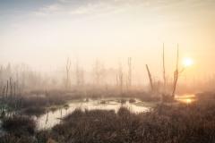 Sonnenaufgang-im-Moor