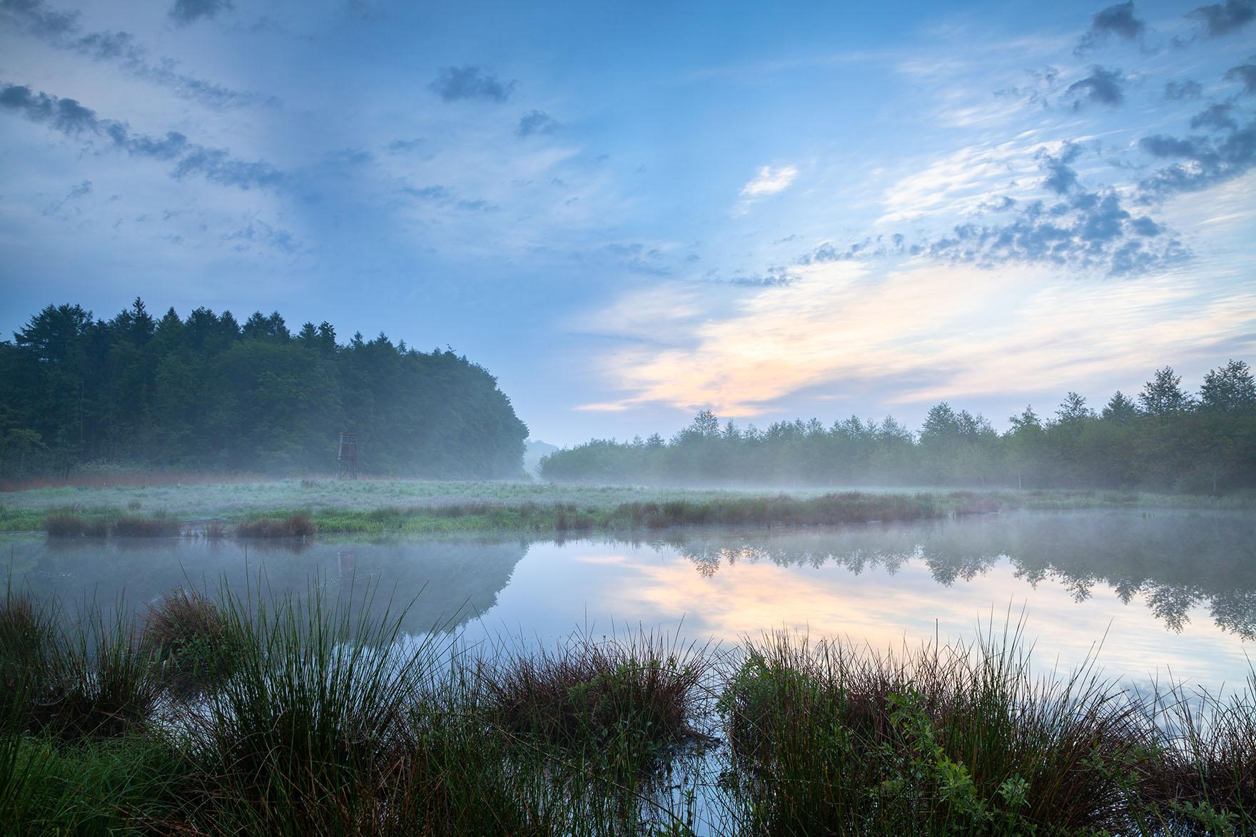 Kleiner Teich im Morgendunst mit dezentem Farbspiel in den Wolken.