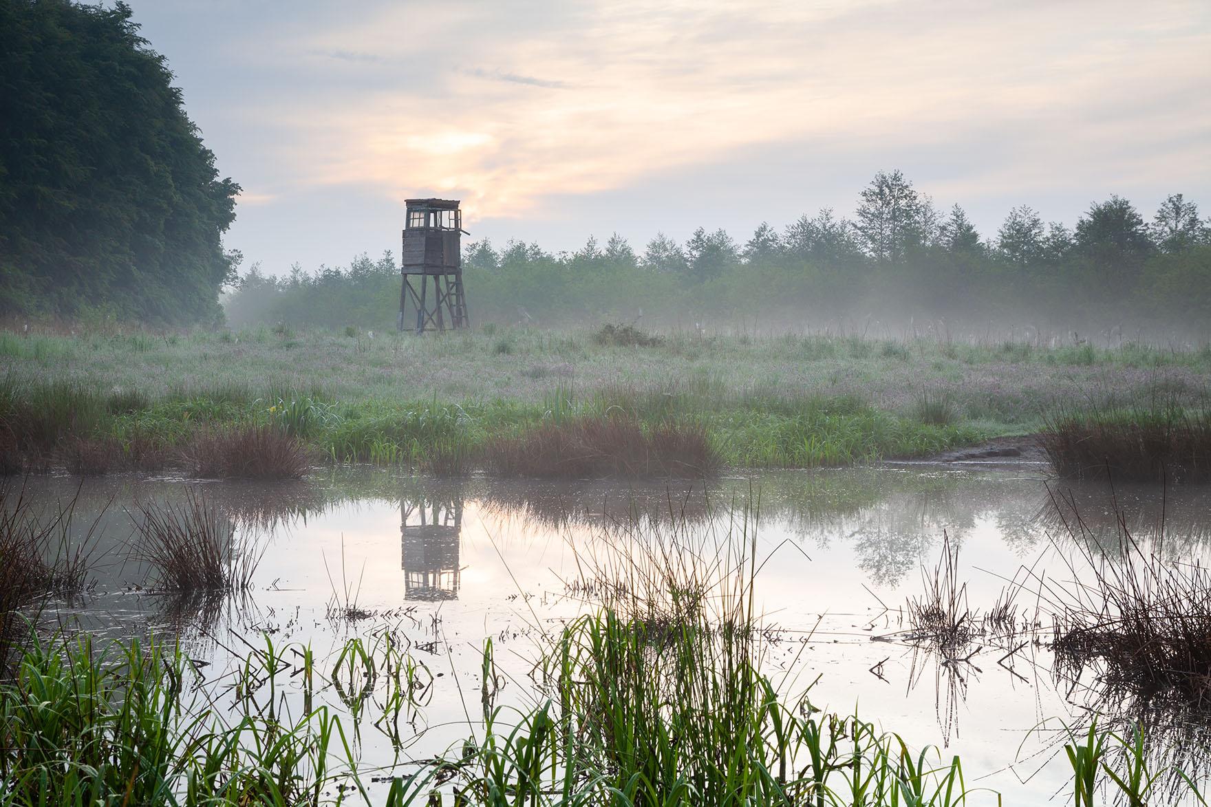 Kleiner Teich im Morgendunst mit dezentem Farbspiel in den Wolken. Die Spegelung des Hochsitzes bietet das gewisse Extra.